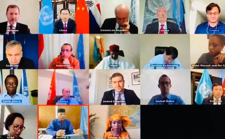 Déclaration de M. Abdou Abarry, Représentant Permanent du Niger auprès des Nations unies au nom de A3 et de Saint-Vincent-et-les-Grenadines au briefing du Conseil de Sécurité sur l'UNOWAS…
