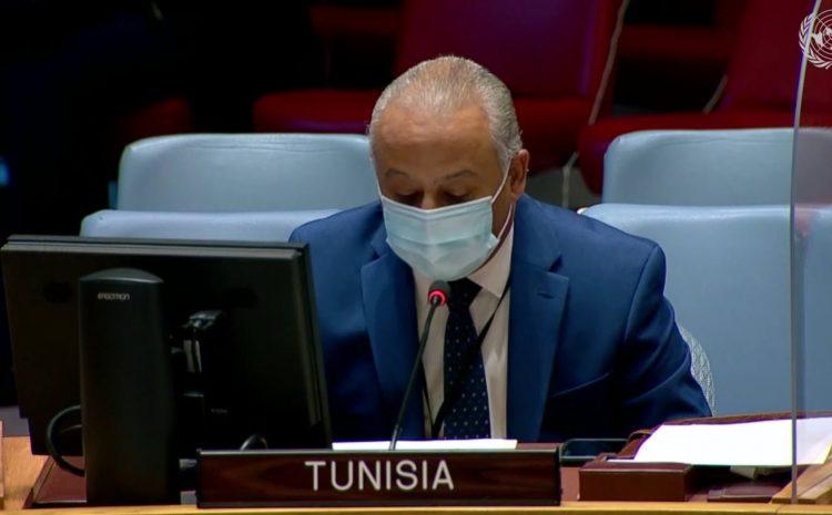 Déclaration prononcée par l'Ambassadeur Tarek Ladeb Représentant permanent de la Tunisie auprès de l'ONU au Conseil de sécurité sur la Force de sécurité intérimaire des Nations unies pour l'Abyei (UNISFA), le Soudan et le Sud-Soudan