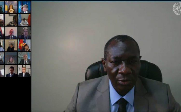 Conseil de sécurité de l'ONU : Intervention de M. Aougui Niandou, représentant permanent adjoint du Niger sur le Kossovo UNMIK