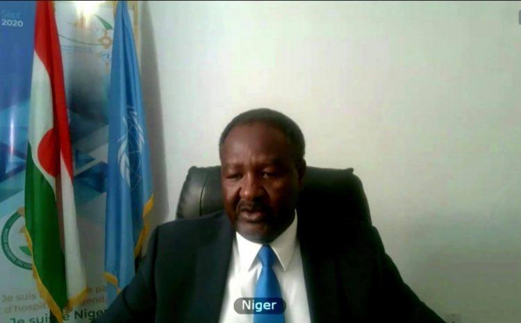Déclaration de M. Abdou Abarry, Représentant Permanent du Niger auprès des Nations Unies au briefing du Conseil de sécurité sur les rapports des Présidents des Comités sur la lutte contre Al-Qaeda et l'Etat islamique d'Irak et du Levant Daesh (résolutions 1267 (1999), 1989 (2011), 2253 (2015) ; anti-terrorisme (résolution 1373), et la non-prolifération (résolution 1540)