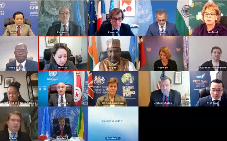 Déclaration de l'Ambassadeur Abdou ABARRY,  Représentant permanent du Niger auprès des Nations unies au nom de l'A3+1 au  briefing du Conseil de sécurité sur la situation au Mali