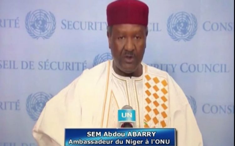 « Le Niger reste engagé dans la Défense des Idéaux de notre organisation continentale et veillera a porter la voix de l'Afrique sur toutes les questions d'intérêt »