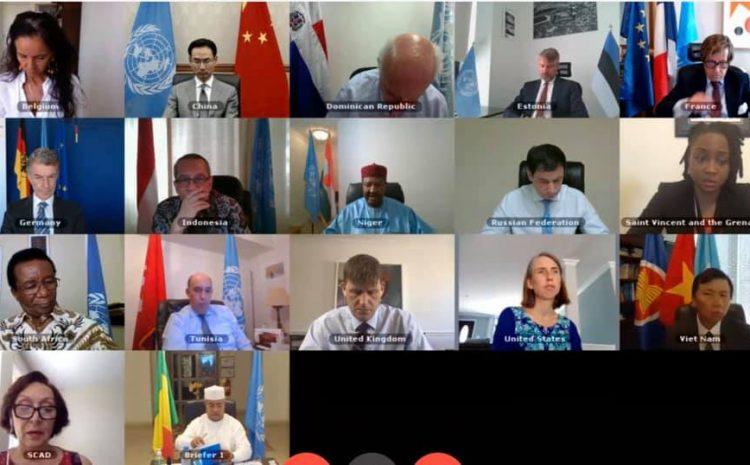 Communiqué de presse du Conseil de sécurité sur le Mali