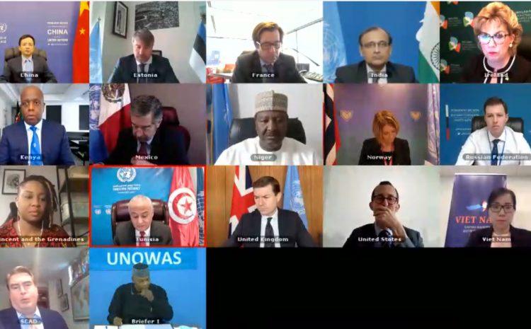 Conseil de Sécurité de L'ONU : Débat ouvert sur le bureau des Nations Unies pour l'Afrique de l'Ouest et le Sahel (UNOWAS)