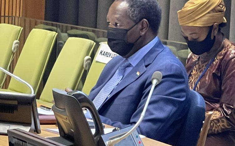 Déclaration de M. Abdou ABARRY,  Représentant permanent du Niger auprès des Nations Unies a la Réunion en formule Arria sur le «renforcement d'une approche intégrée de la paix et de la sécurité au Sahel à travers un prisme genre».