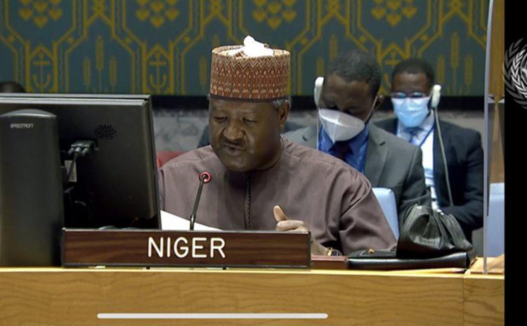 Déclaration de M. Abdou Abarry, Représentant Permanent du Niger auprès des Nations Sur la situation au Moyen Orient, y compris la question Palestinienne
