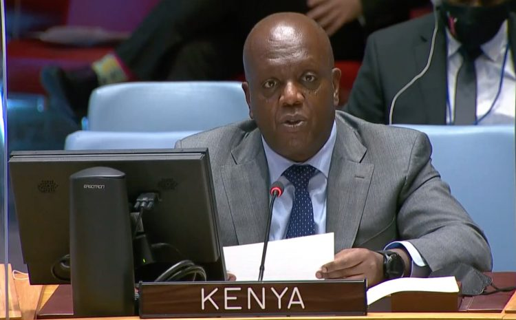 A3 + 1 STATEMENT ON THE UNITED NATIONS STABILIZATION MISSION IN THE DEMOCRATIC REPUBLIC OF THE CONGO (MONUSCO)
