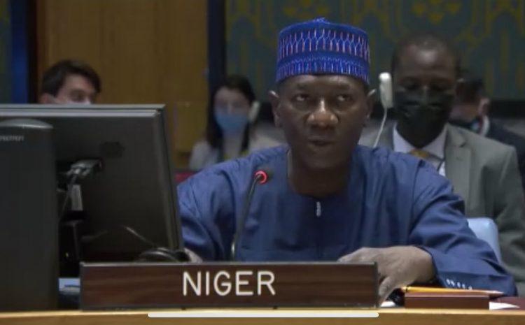 Allocution de M. Aougui NIANDOU, Représentant Permanent Adjoint du Niger auprès des Nations Unies au briefing du Conseil de Sécurité sur la situation politique et humanitaire en Syrie