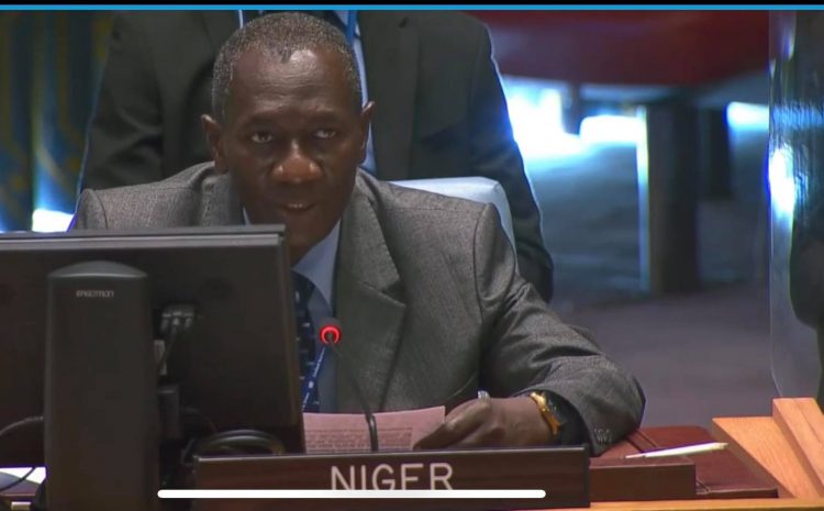 Déclaration de M. Aougui NIANDOU Représentant Permanent-adjoint de la République  du Niger auprès des Nations Unies au briefing du Conseil de Sécurité sur la situation au Kossovo